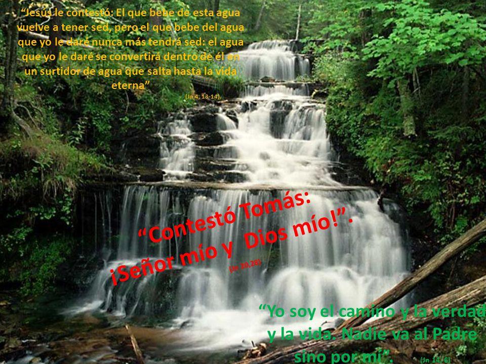 Jesús le contestó: El que bebe de esta agua vuelve a tener sed, pero el que bebe del agua que yo le daré nunca más tendrá sed: el agua que yo le daré