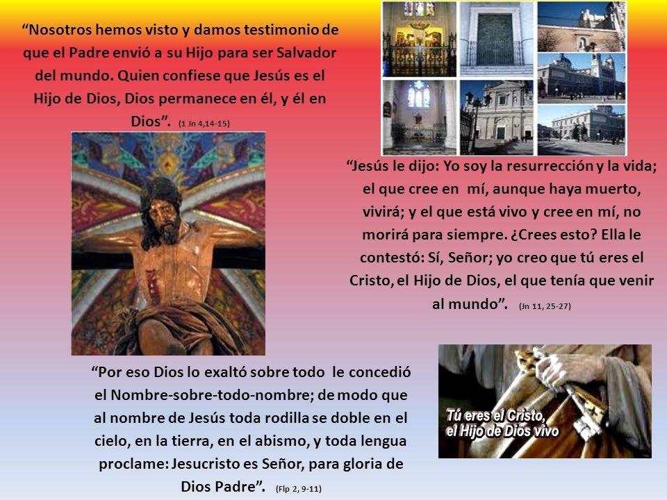 Nosotros hemos visto y damos testimonio de que el Padre envió a su Hijo para ser Salvador del mundo. Quien confiese que Jesús es el Hijo de Dios, Dios