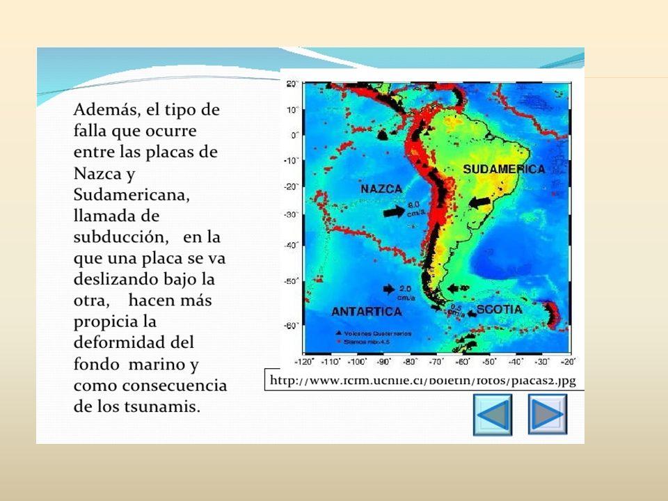 Es una placa tectónica que abarca dicho subcontinente y la porción del océano Atlántico Sur comprendida entre la costa sudamericana y la dorsal mesoatlántica, esta placa abarca unos 9 millones de kilómetros cuadrados.