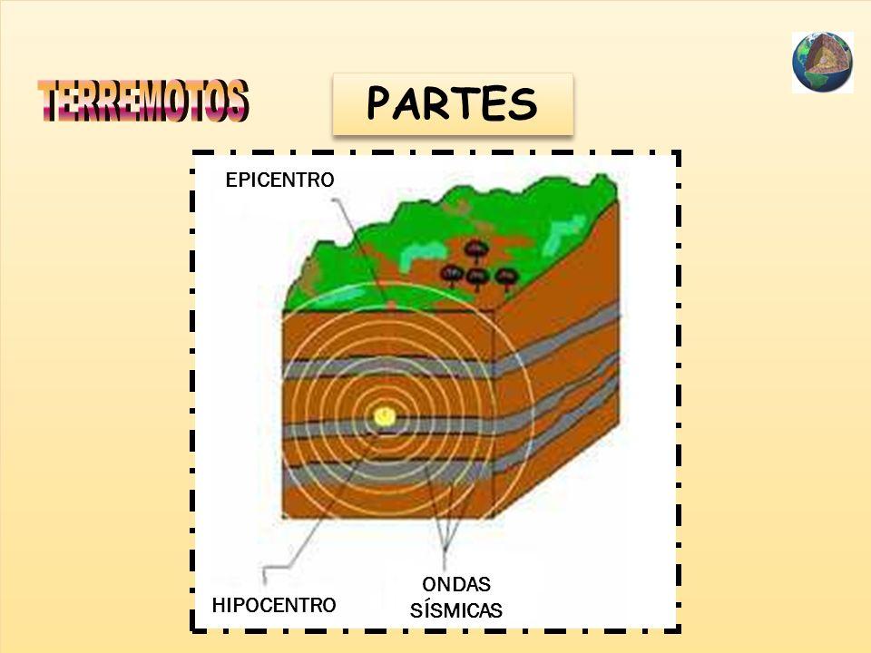 PARTES CRÁTER LAVA FUMAROLA (gases) CALDERA CONO ADVENTICIO CHIMENEA MAGMA CONO