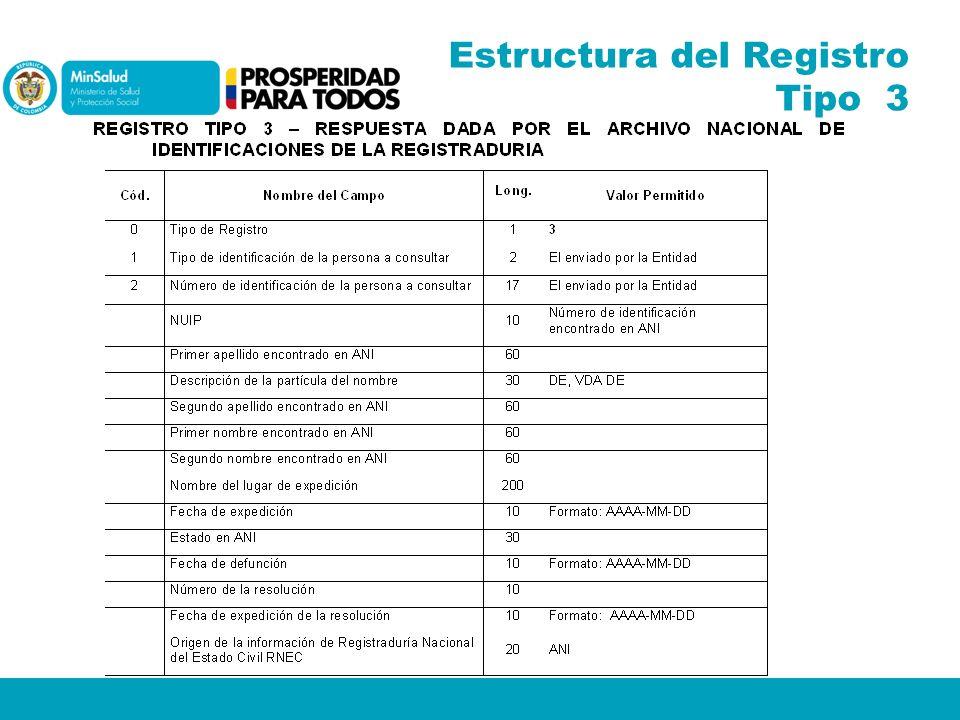 Estructura del Registro Tipo 3
