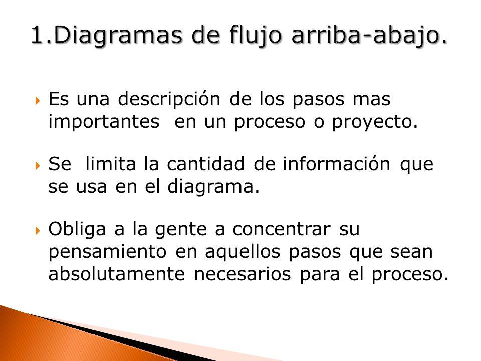 Es una descripción de los pasos mas importantes en un proceso o proyecto. Se limita la cantidad de información que se usa en el diagrama. Obliga a la