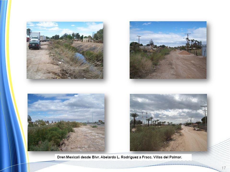 Dren Puebla, al Sur de los Desarrollos Valle de Puebla. Fotografías representativas del Dren Tula 16