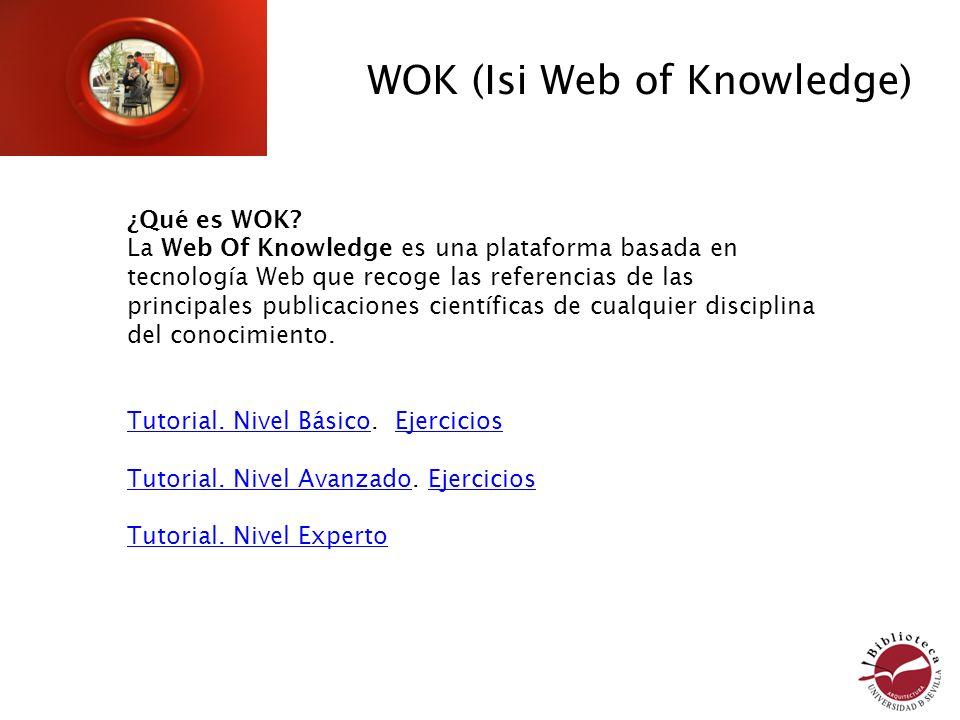 ¿Qué es WOK.