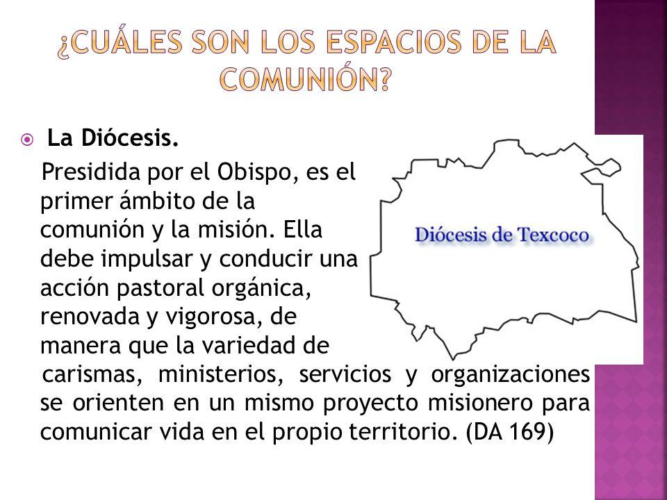La Diócesis. Presidida por el Obispo, es el primer ámbito de la comunión y la misión. Ella debe impulsar y conducir una acción pastoral orgánica, reno
