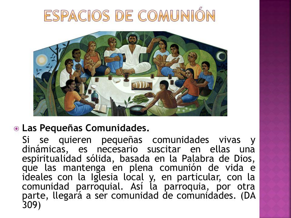 Las Pequeñas Comunidades. Si se quieren pequeñas comunidades vivas y dinámicas, es necesario suscitar en ellas una espiritualidad sólida, basada en la