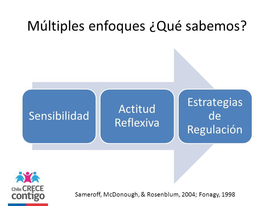 Múltiples enfoques ¿Qué sabemos? Sensibilidad Actitud Reflexiva Estrategias de Regulación Sameroff, McDonough, & Rosenblum, 2004; Fonagy, 1998