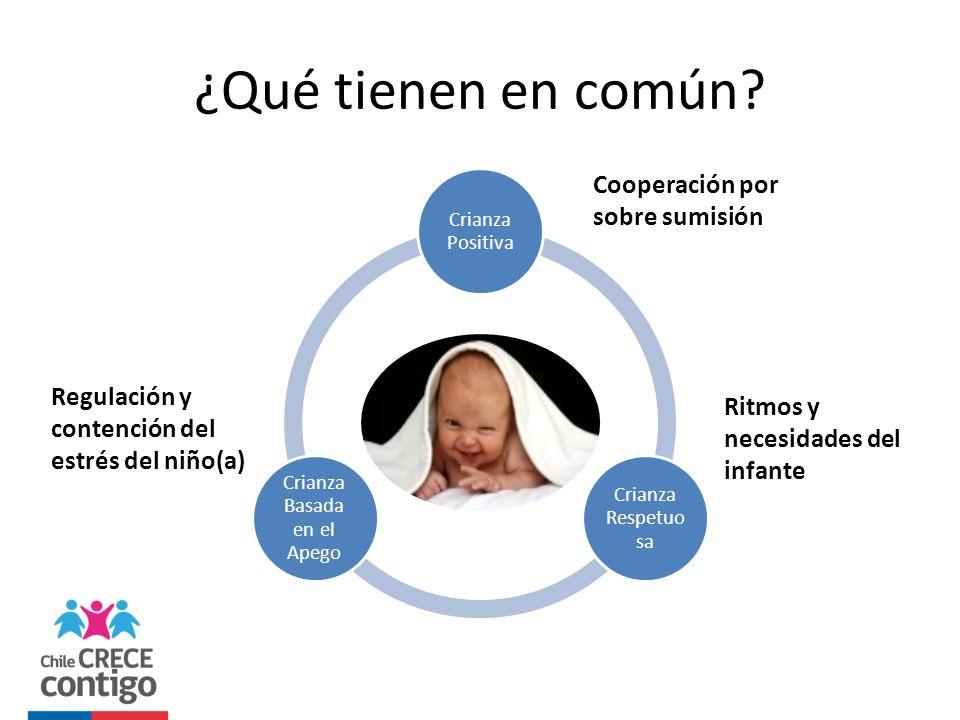 ¿Qué tienen en común? Crianza Positiva Crianza Respetuo sa Crianza Basada en el Apego Ritmos y necesidades del infante Regulación y contención del est