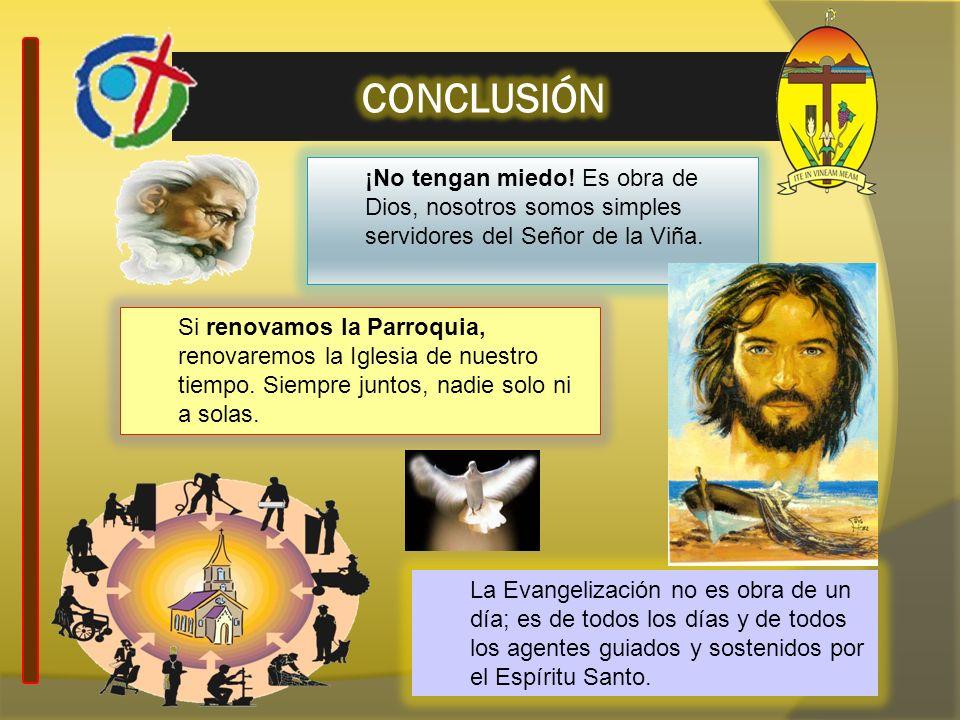 ¡No tengan miedo! Es obra de Dios, nosotros somos simples servidores del Señor de la Viña. Si renovamos la Parroquia, renovaremos la Iglesia de nuestr