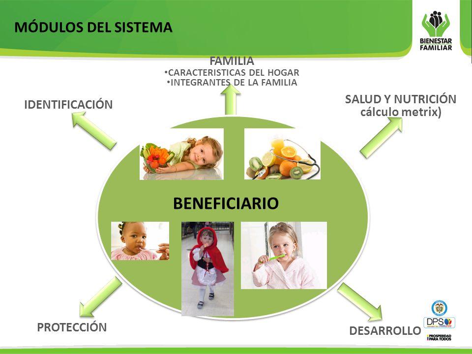 MÓDULOS DEL SISTEMA IDENTIFICACIÓN SALUD Y NUTRICIÓN cálculo metrix) PROTECCIÓN DESARROLLO FAMILIA CARACTERISTICAS DEL HOGAR INTEGRANTES DE LA FAMILIA BENEFICIARIO