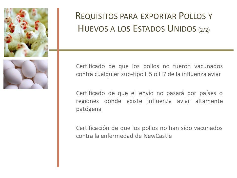 R EQUISITOS PARA EXPORTAR P OLLOS Y H UEVOS A LOS E STADOS U NIDOS (2/2) Certificado de que los pollos no fueron vacunados contra cualquier sub-tipo H5 o H7 de la influenza aviar Certificado de que el envío no pasará por países o regiones donde existe influenza aviar altamente patógena Certificación de que los pollos no han sido vacunados contra la enfermedad de NewCastle