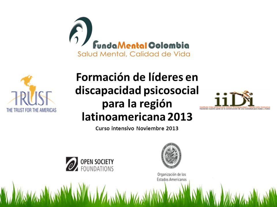 Formación de líderes en discapacidad psicosocial para la región latinoamericana 2013 Curso intensivo Noviembre 2013