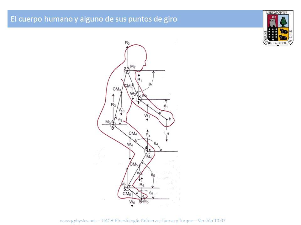 El cuerpo humano y alguno de sus puntos de giro www.gphysics.net – UACH-Kinesiología-Refuerzo, Fuerza y Torque – Versión 10.07