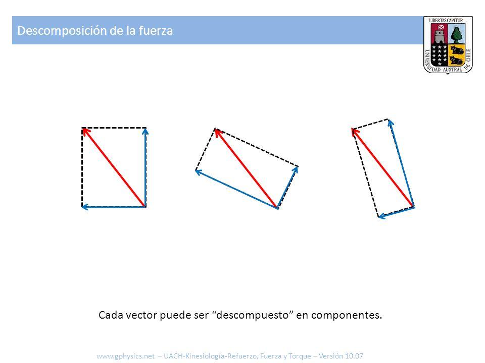 Si se conoce el ángulo entre el vector y el lado sobre el que se desea proyectar se pueden calcular cada componente empleando el coseno y el seno F cos F sin F cos Calculo de componentes de la fuerza www.gphysics.net – UACH-Kinesiología-Refuerzo, Fuerza y Torque – Versión 10.07
