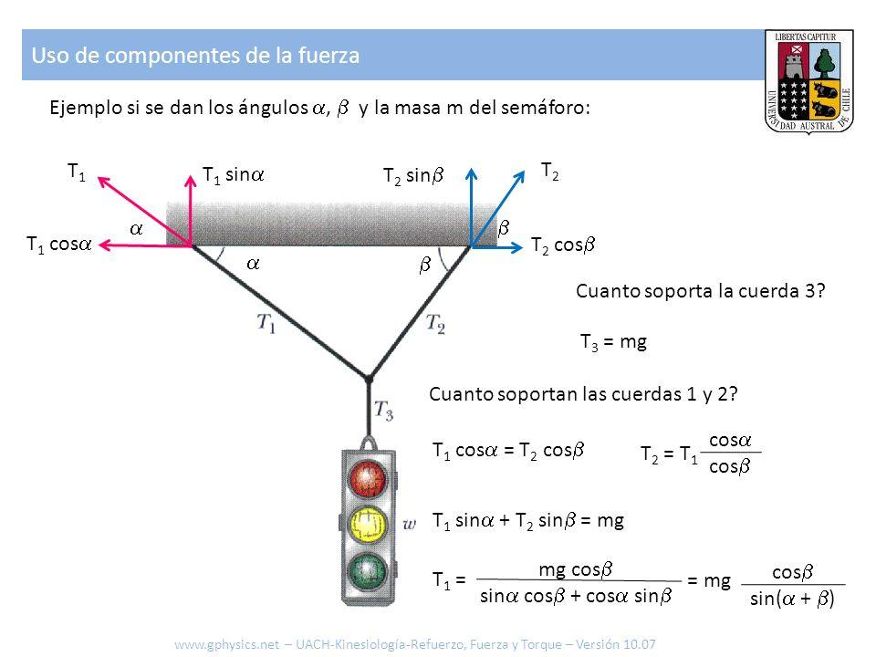 Ejemplo si se dan los ángulos, y la masa m del semáforo: Uso de componentes de la fuerza www.gphysics.net – UACH-Kinesiología-Refuerzo, Fuerza y Torque – Versión 10.07 Cuanto soportan las cuerdas 1 y 2.