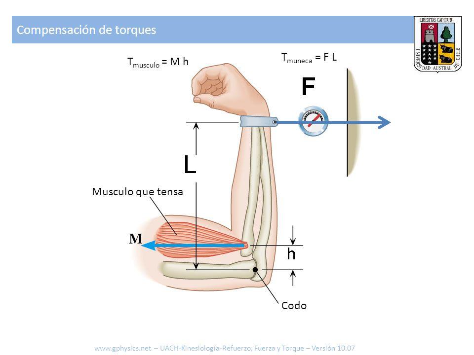 Pasos a seguir 1.Localizar donde actúa la fuerza 2.Localizar el eje de giro 3.Localizar el brazo (la palanca) 4.Identificar como se definió ángulo 5.Dibujar componente de la Fuerza que sea vertical al brazo (siempre mas corta que Fuerza original) 6.Determinar ángulo para la proyección 7.Calcular la proyección 8.Calcular el Torque F d d F cos Calculando el torque sobre el codo www.gphysics.net – UACH-Kinesiología-Refuerzo, Fuerza y Torque – Versión 10.07 T = d F cos