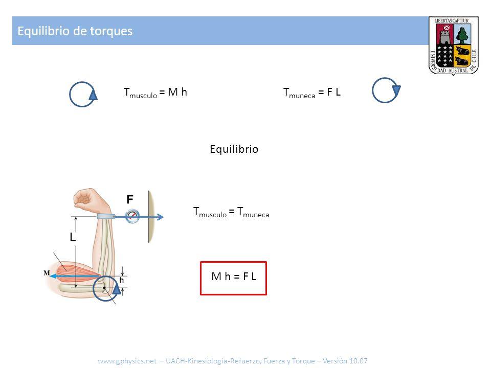 T muneca = F LT musculo = M h Equilibrio M h = F L T musculo = T muneca Equilibrio de torques www.gphysics.net – UACH-Kinesiología-Refuerzo, Fuerza y Torque – Versión 10.07