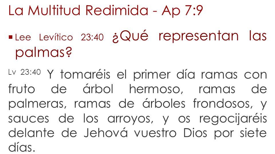La Multitud Redimida - Ap 7:9 Lee Levítico 23:40 ¿Qué representan las palmas? Lv 23:40 Y tomaréis el primer día ramas con fruto de árbol hermoso, rama