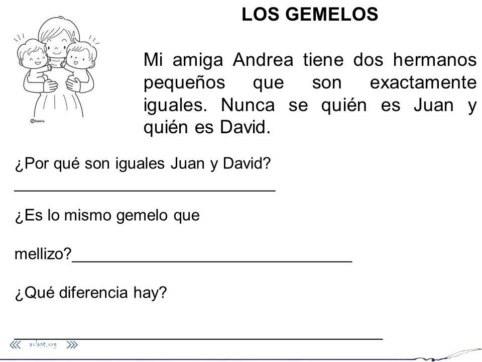 aulapt.org LOS GEMELOS Mi amiga Andrea tiene dos hermanos pequeños que son exactamente iguales. Nunca se quién es Juan y quién es David. ¿Por qué son