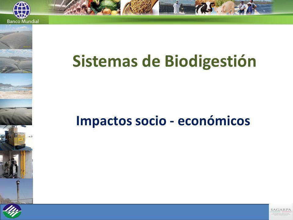 Sistemas de Biodigestión Impactos socio - económicos
