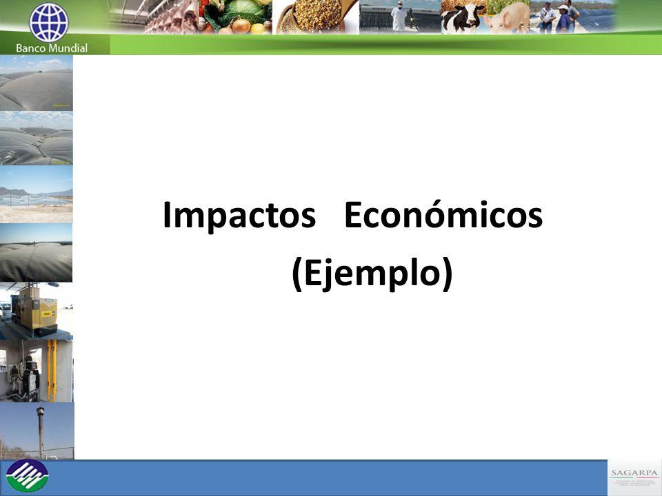 Impactos Económicos (Ejemplo)