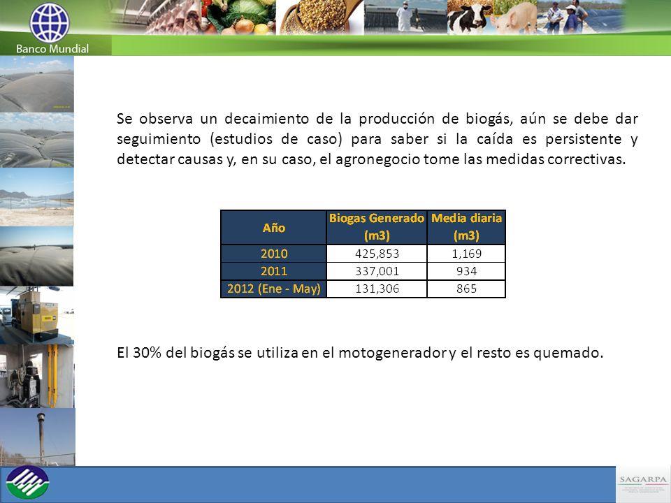 Se observa un decaimiento de la producción de biogás, aún se debe dar seguimiento (estudios de caso) para saber si la caída es persistente y detectar