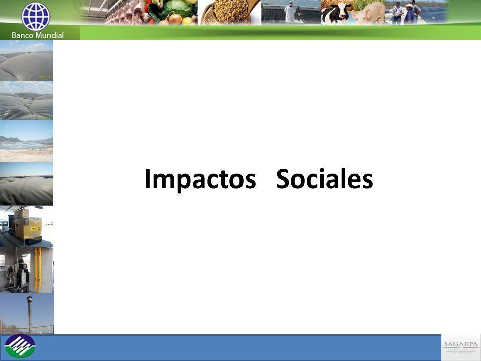 Impactos Sociales