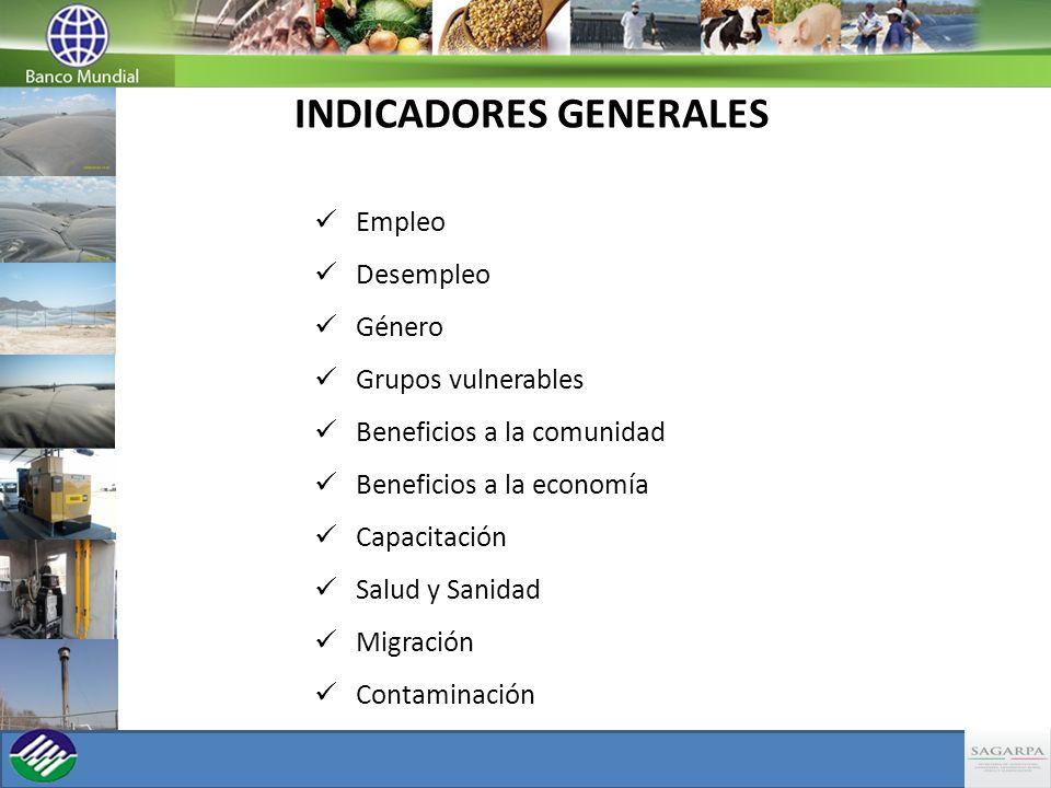 INDICADORES GENERALES Empleo Desempleo Género Grupos vulnerables Beneficios a la comunidad Beneficios a la economía Capacitación Salud y Sanidad Migra