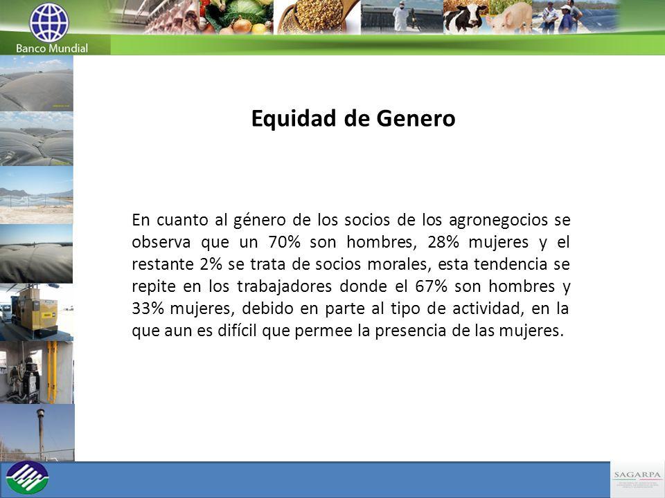 Equidad de Genero En cuanto al género de los socios de los agronegocios se observa que un 70% son hombres, 28% mujeres y el restante 2% se trata de so