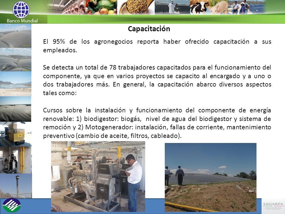 Capacitación El 95% de los agronegocios reporta haber ofrecido capacitación a sus empleados. Se detecta un total de 78 trabajadores capacitados para e