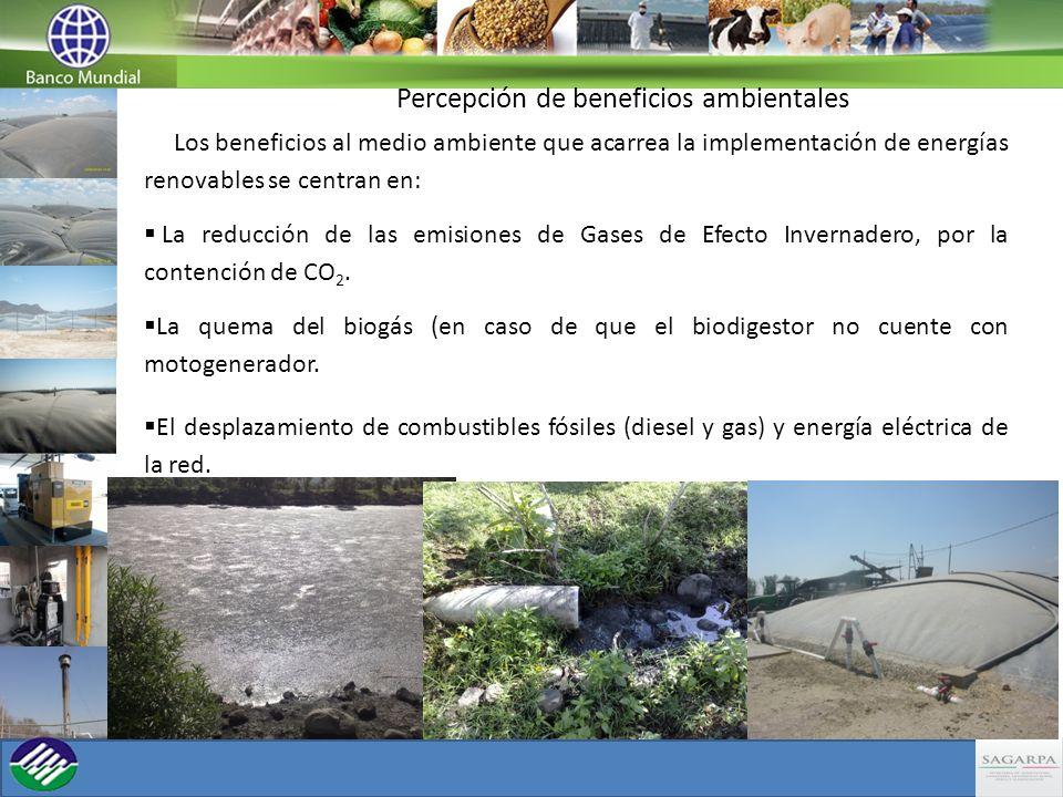 Percepción de beneficios ambientales Los beneficios al medio ambiente que acarrea la implementación de energías renovables se centran en: La reducción