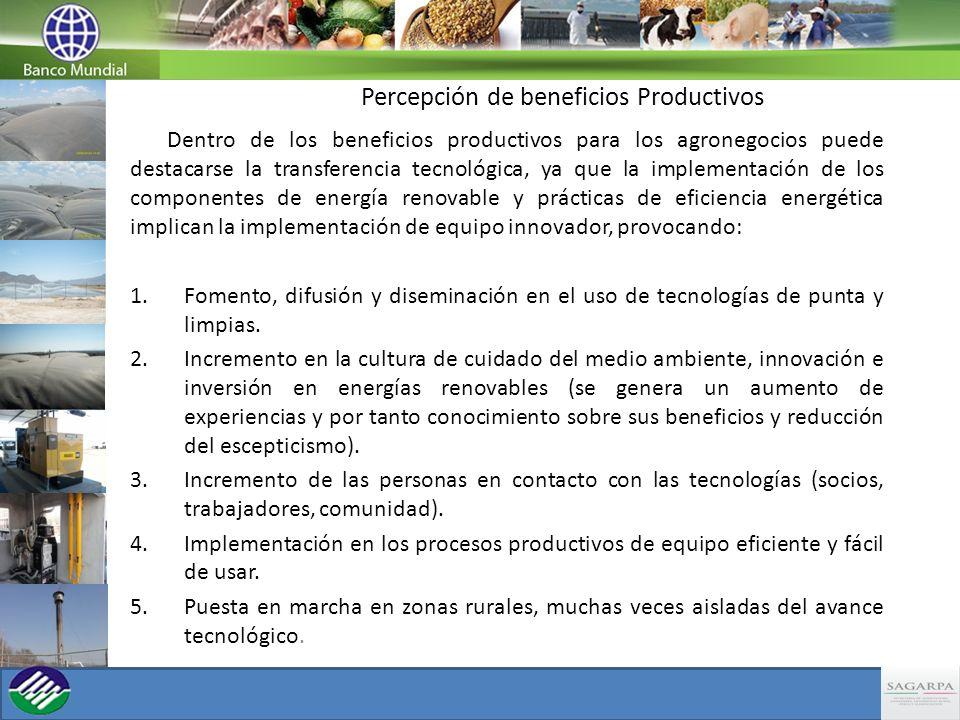 Percepción de beneficios Productivos Dentro de los beneficios productivos para los agronegocios puede destacarse la transferencia tecnológica, ya que