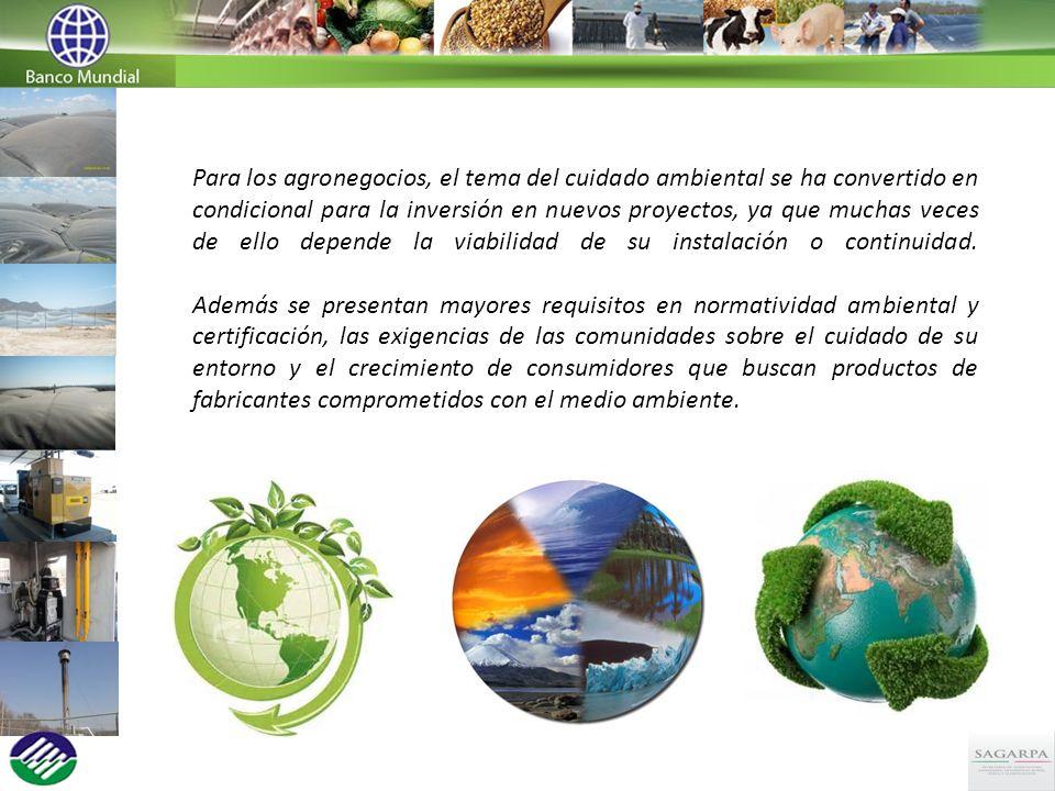 Para los agronegocios, el tema del cuidado ambiental se ha convertido en condicional para la inversión en nuevos proyectos, ya que muchas veces de ell