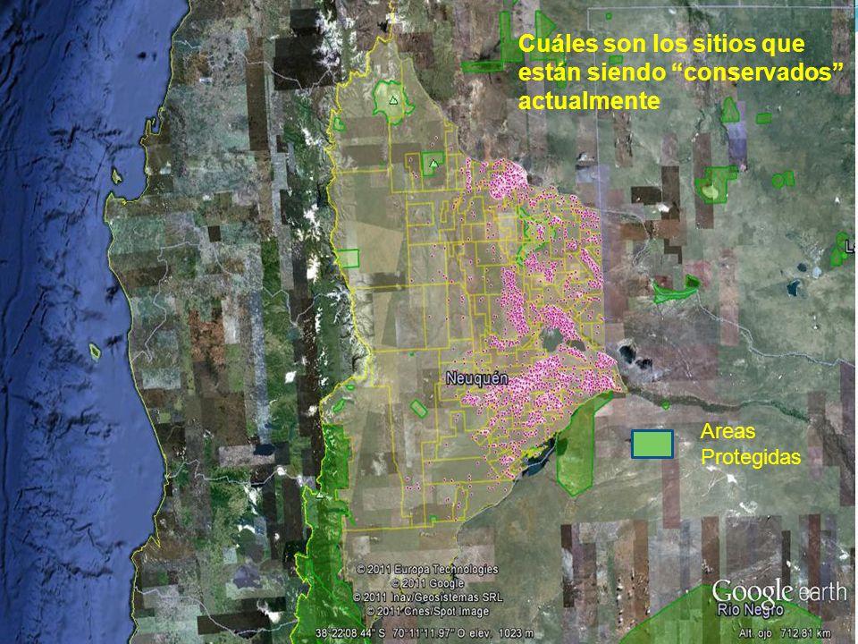 Cuáles son los sitios que están siendo conservados actualmente Areas Protegidas