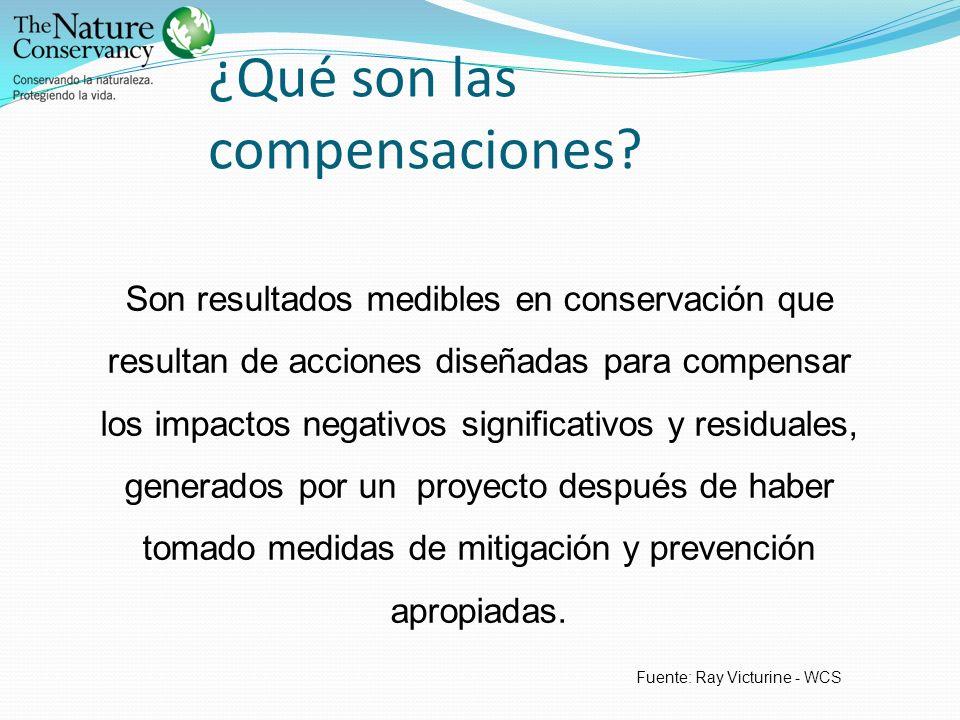¿Qué son las compensaciones? Son resultados medibles en conservación que resultan de acciones diseñadas para compensar los impactos negativos signific