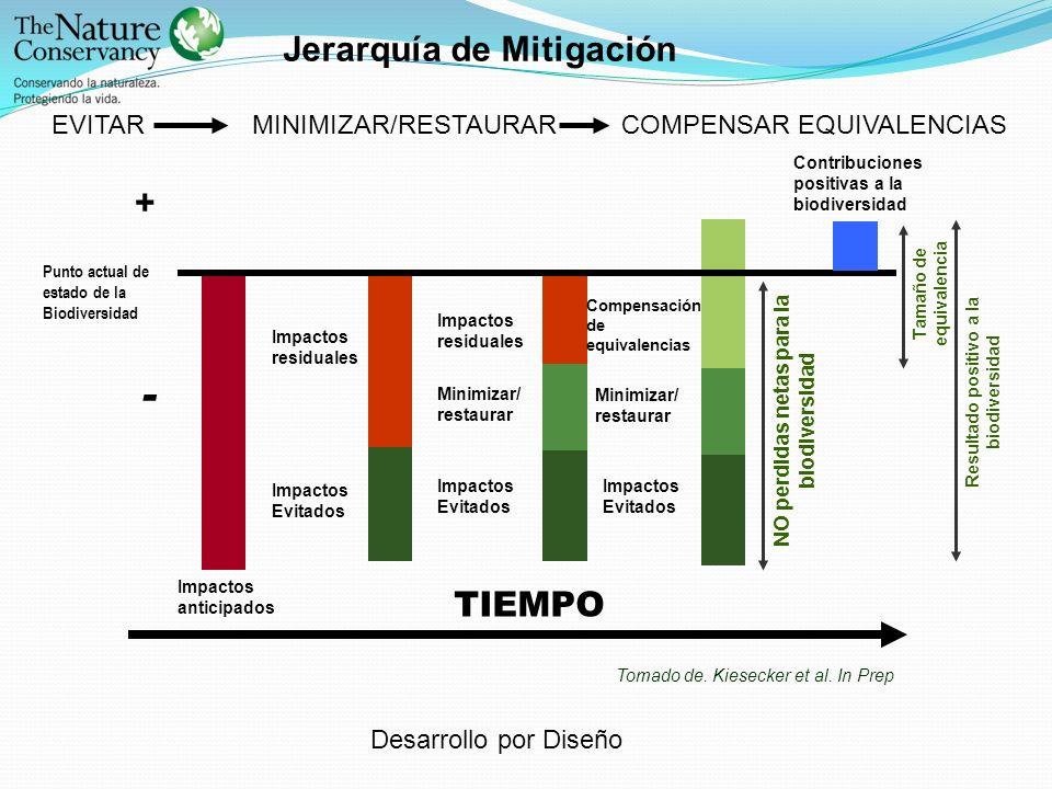 Punto actual de estado de la Biodiversidad NO perdidas netas para la biodiversidad Resultado positivo a la biodiversidad + - Impactos anticipados Impa