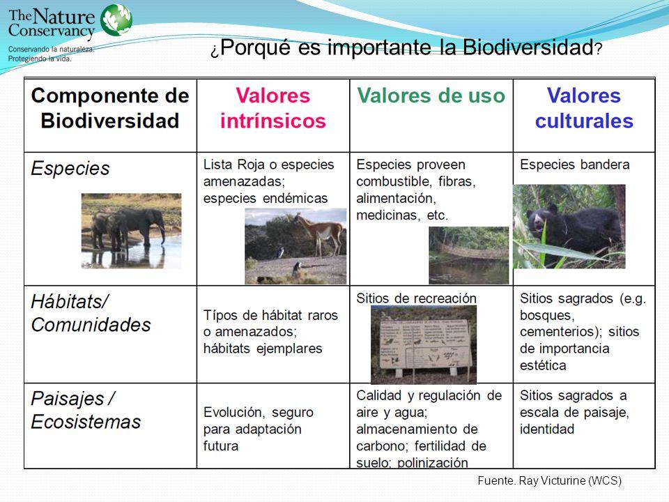 ¿ Porqué es importante la Biodiversidad ? Fuente. Ray Victurine (WCS)