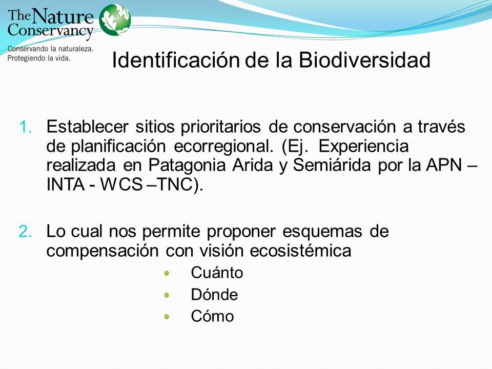 1. Establecer sitios prioritarios de conservación a través de planificación ecorregional. (Ej. Experiencia realizada en Patagonia Arida y Semiárida po