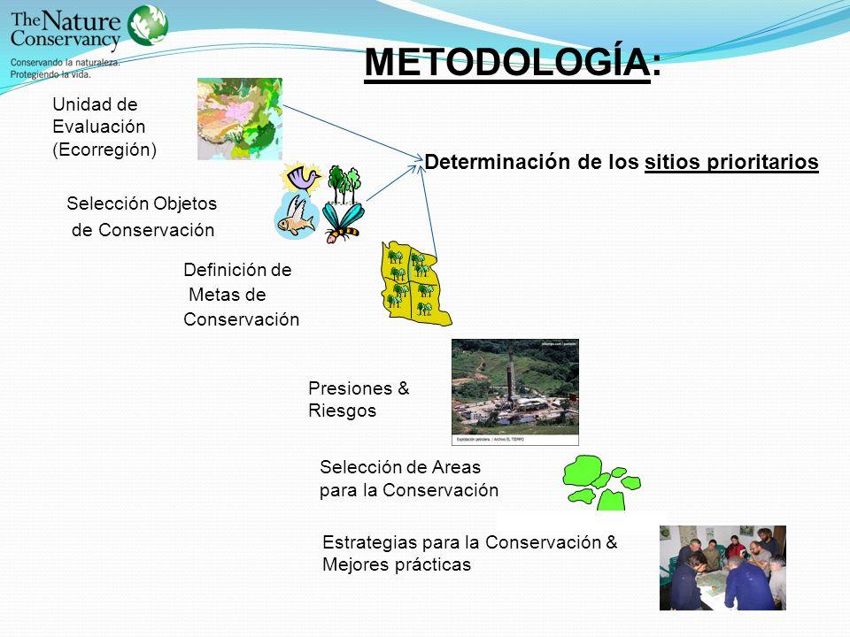 Selección de Areas para la Conservación Definición de Metas de Conservación Selección Objetos de Conservación Presiones & Riesgos Unidad de Evaluación