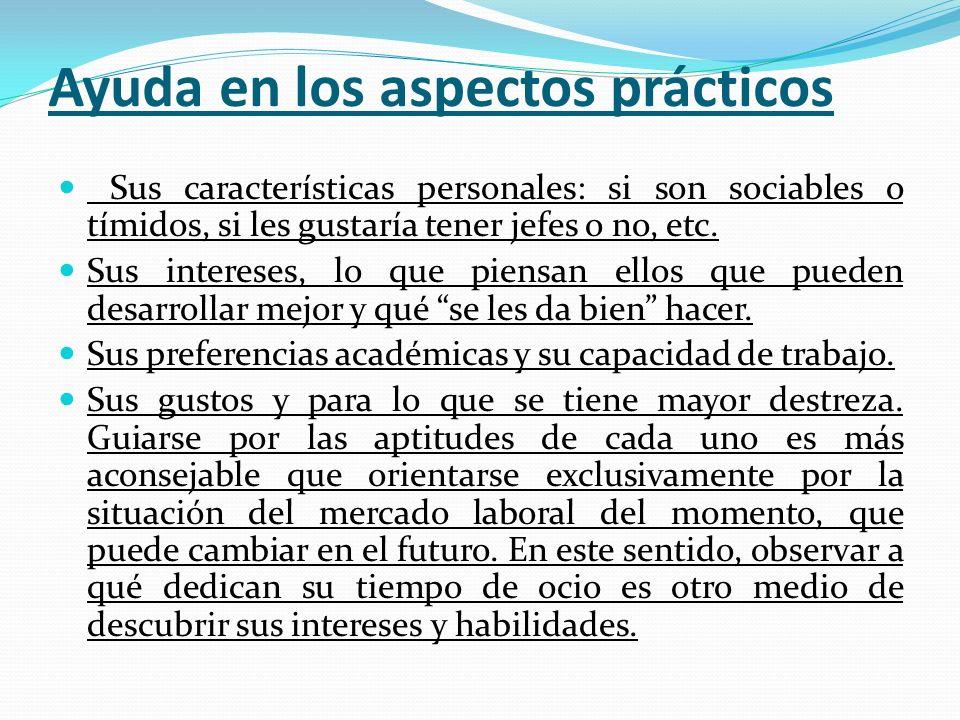 Ayuda en los aspectos prácticos Sus características personales: si son sociables o tímidos, si les gustaría tener jefes o no, etc. Sus intereses, lo q