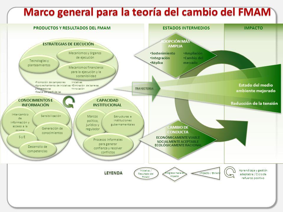 PRODUCTOS Y RESULTADOS DEL FMAMESTADOS INTERMEDIOSIMPACTO Marco general para la teoría del cambio del FMAM Aprendizaje y gestión adaptable / Ciclo de refuerzo positivo ESTRATEGIAS DE EJECUCIÓN Tecnologías y planteamientos Mecanismos y órganos de ejecución Mecanismos financieros para la ejecución y la sostenibilidad Promoción de campeones Aprovechamiento de iniciativas prometedoras Realce del perfil de las iniciativas Eliminación de barreras Innovación CAPACIDAD INSTITUCIONAL Marcos político, jurídico y regulador Estructuras e instituciones gubernamentales Procesos informales para generar confianza y resolver conflictos CONOCIMIENTOS E INFORMACIÓN Intercambio de información y acceso a la misma Sensibilización Generación de conocimientos S y E Desarrollo de competencias Reducción de la tensión Estado del medio ambiente mejorado TRAYECTORIA Iniciativa / Resultado del FMAM Progreso hacia el impacto Impacto / BMAM LEYENDA