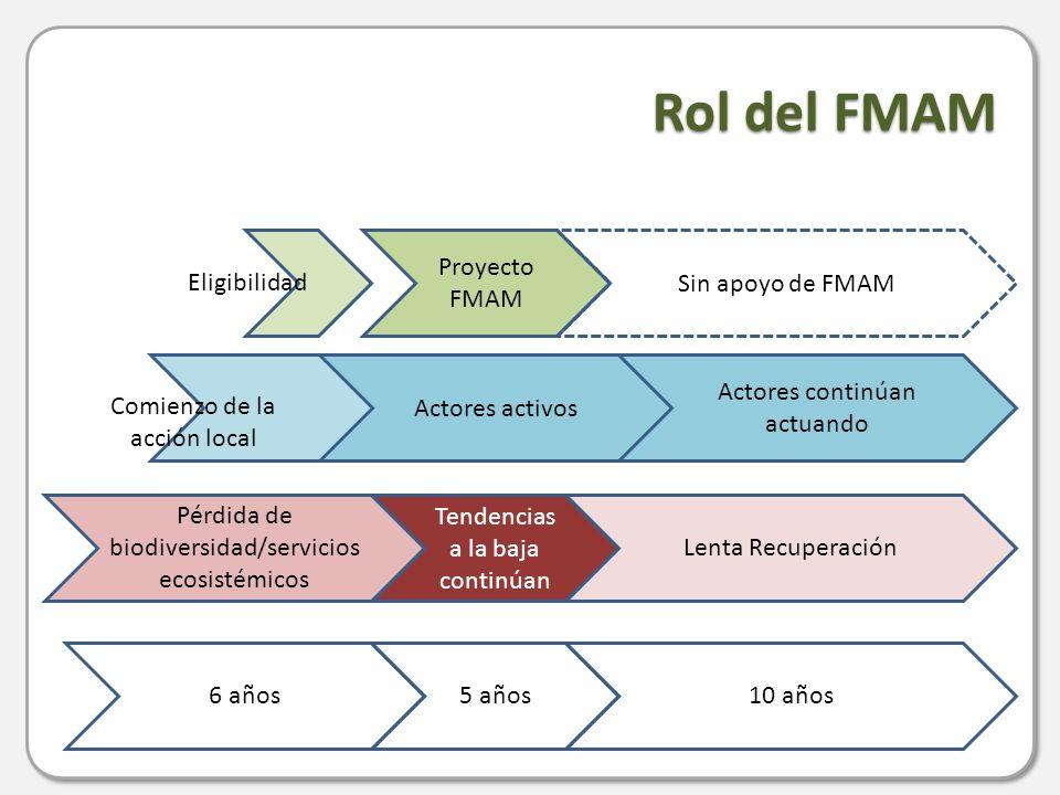 Rol del FMAM 6 años Tendencias a la baja continúan Proyecto FMAM Actores activos Lenta Recuperación Sin apoyo de FMAM Actores continúan actuando Pérdida de biodiversidad/servicios ecosistémicos 5 años10 años Eligibilidad Comienzo de la acción local