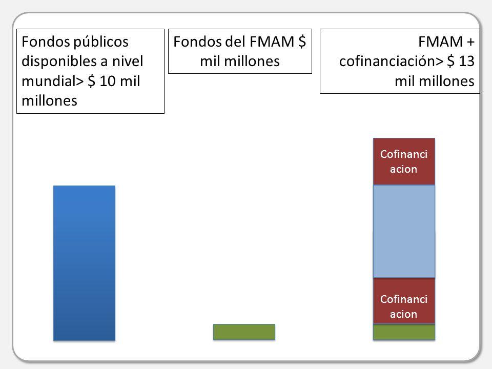 Fondos públicos disponibles a nivel mundial> $ 10 mil millones FMAM + cofinanciación> $ 13 mil millones Fondos del FMAM $ mil millones Cofinanci acion