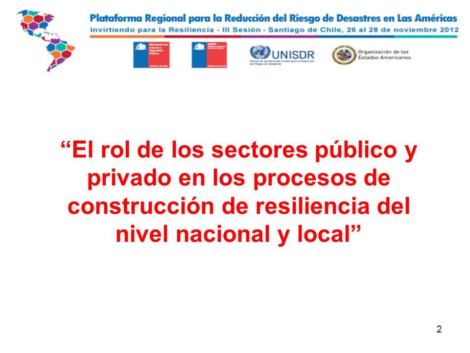 2 El rol de los sectores público y privado en los procesos de construcción de resiliencia del nivel nacional y local