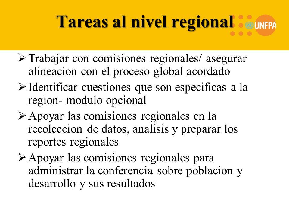 Tareas al nivel regional Trabajar con comisiones regionales/ asegurar alineacion con el proceso global acordado Identificar cuestiones que son especif