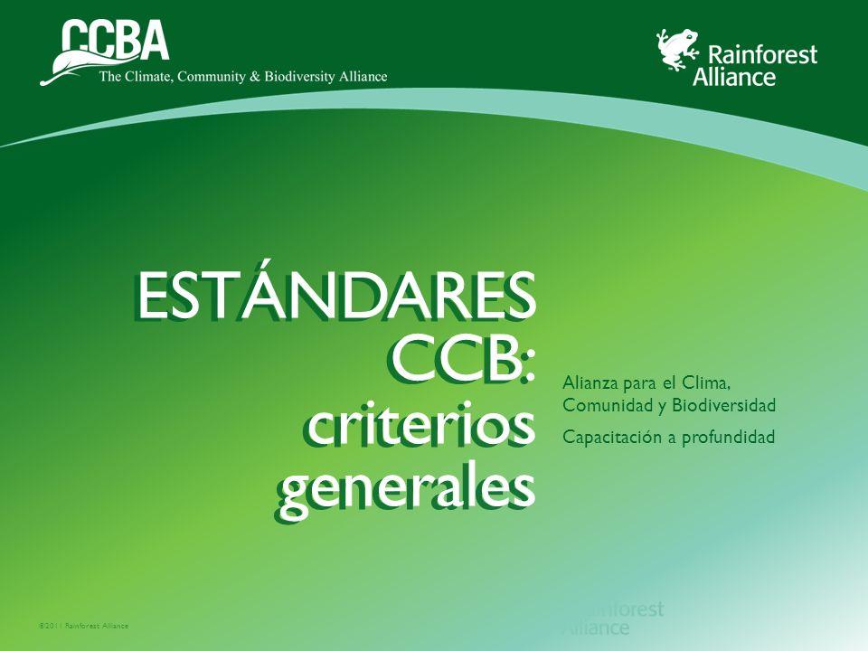 ©2011 Rainforest Alliance Alianza para el Clima, Comunidad y Biodiversidad Capacitación a profundidad ESTÁNDARES CCB: criterios generales ESTÁNDARES CCB: criterios generales