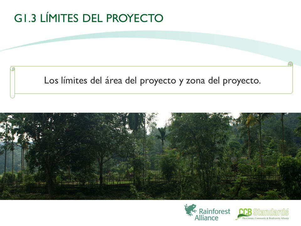 Los límites del área del proyecto y zona del proyecto. G1.3 LÍMITES DEL PROYECTO