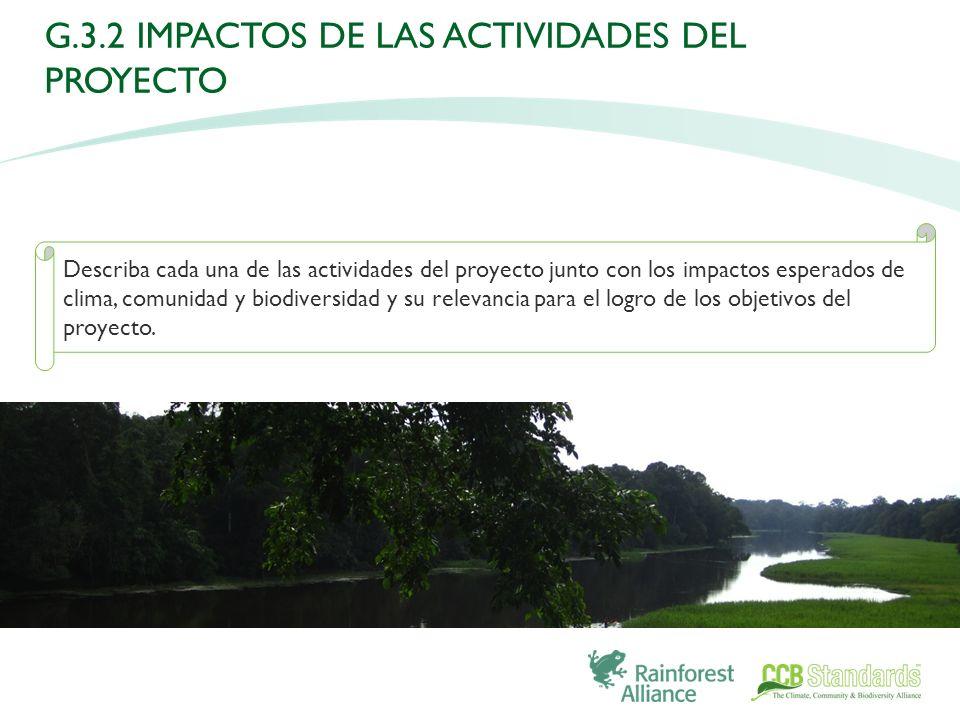 Describa cada una de las actividades del proyecto junto con los impactos esperados de clima, comunidad y biodiversidad y su relevancia para el logro de los objetivos del proyecto.