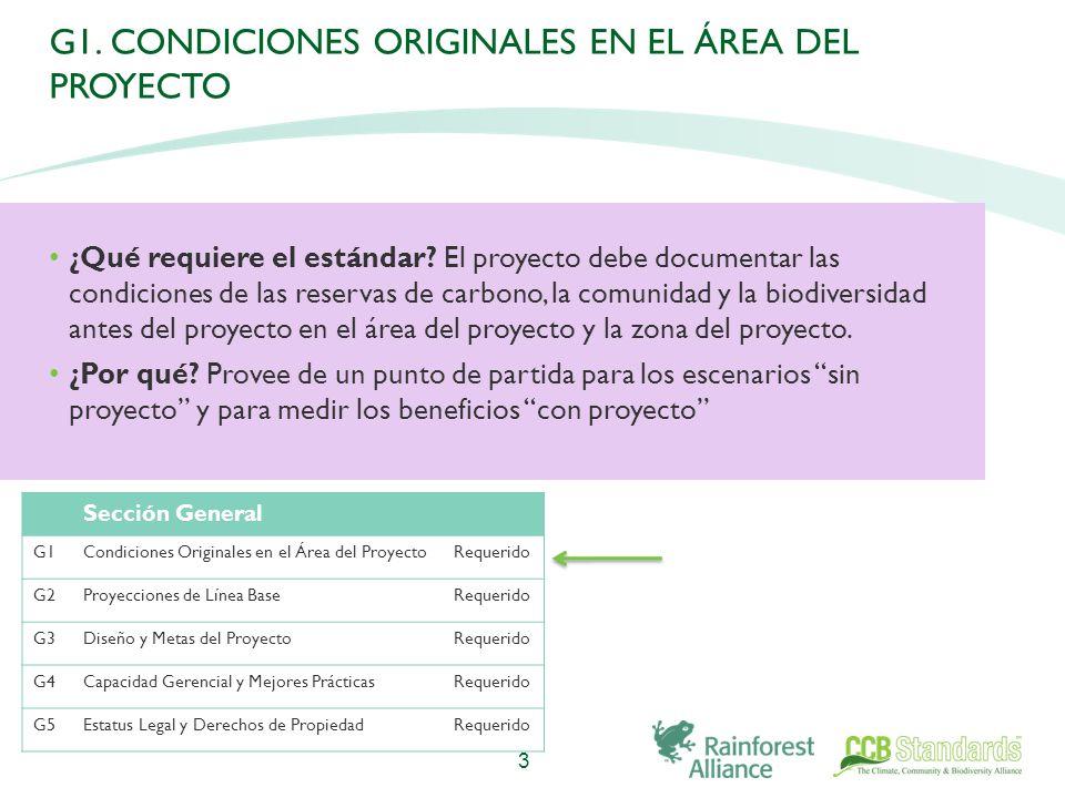 G1. CONDICIONES ORIGINALES EN EL ÁREA DEL PROYECTO ¿Qué requiere el estándar.