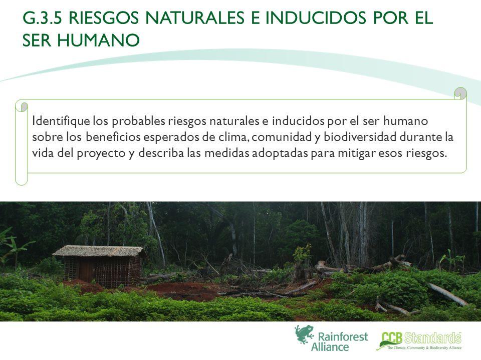 Identifique los probables riesgos naturales e inducidos por el ser humano sobre los beneficios esperados de clima, comunidad y biodiversidad durante la vida del proyecto y describa las medidas adoptadas para mitigar esos riesgos.